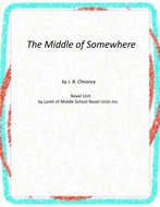 The Middle of Somewhere Novel Unit with Literary and Grammar Activities