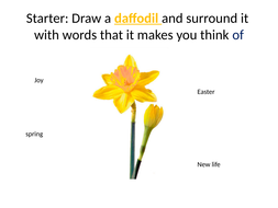 daffodils ks3 poetry lesson by mgroverresources teaching resources. Black Bedroom Furniture Sets. Home Design Ideas
