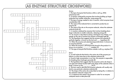 A Level Biology: Crossword Pack on Enzyme Structure and Activity