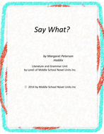 Say What Novel Unit with Literary and Grammar Activities
