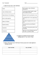KS3 settlement assessment