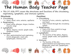Circulatory--Respiratory--Lymphatic--and-Immune-Systems-slide-show.pdf