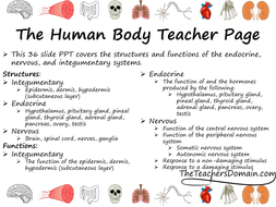 Endocrine--Nervous--and-Integumentary-Systems-slide-show.pdf