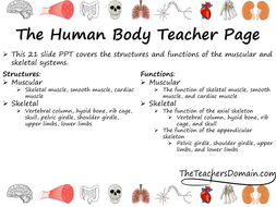 Muscular-and-Skeletal-Systems-slide-show.pdf
