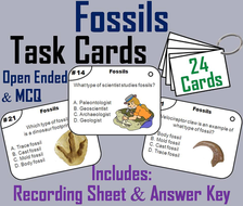 Types of Fossils Task Cards