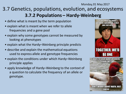 Lesson 8 - 3.7.2-Populations---Hardy-Weinberg.pptx