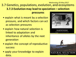 Lesson 10 - 3.7.3.1-Evolution-may-lead-to-speciation---selection.pptx