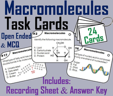 Macromolecules Task Cards/ Carbon Compounds: Carbohydrates, Lipids, Proteins, and Nucleic Acids