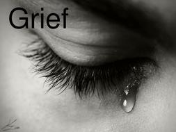 OCR GCE H074 Literature Poetry - 'Grief' by Carol Ann Duffy.