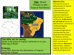 tropical rainforest title