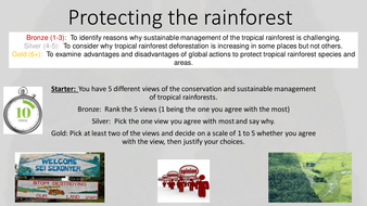 Protecting the rainforest