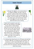 preview-images-saint-davids-day-texts-and-comprehensions-4.pdf