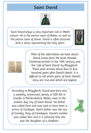 preview-images-saint-davids-day-texts-and-comprehensions-1.pdf