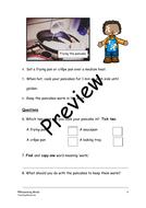 Preview-Page-2.pdf