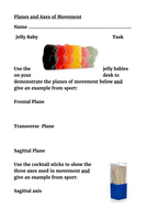 Planes-and-Axes-of-Movement---Jelly-Babies-Task.docx