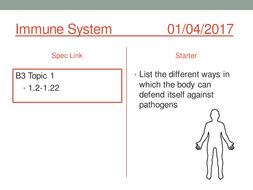Immune-Response.pptx