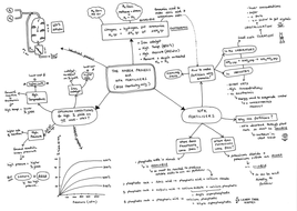 Mind Maps for Year 11 Chemistry Content of AQA GCSE