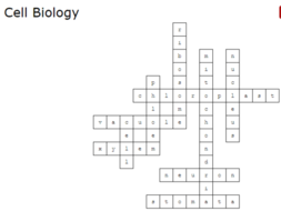 cell-biology-crossword-answers.PNG