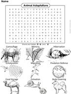 Animal-Adaptations-Word-Search.pdf