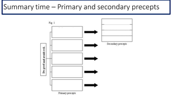 Summary-time---Primary-and-secondary-precepts-template-task.pptx