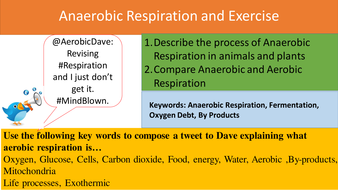 Anaerobic-Respiration-and-Exercise-PPT.pptx