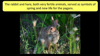 preview-images-Easter-Presentation-Fascinating-and-Fun-Facts-10.pdf
