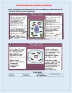 PLANT AND ANIMAL CELL WORKSHEET WITH ANSWERS