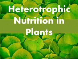 Hetrotrophic Nutrition In Plants By Adlenesangeeth Teaching