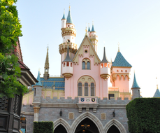 FLD.12-x-12-Castle-from-Peter-Pan.jpg