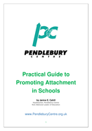 Practical Guide to Attachment in Schools by Janice Cahill