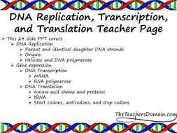 Converting Metric Units Worksheets Pdf Genetics Dna Replication Translation And Transcription Slide  Building Confidence Worksheets with B And D Worksheet Pdf  Dnarepltransctranslpdf 1rst Grade Worksheets Excel