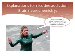 3-Explanations-for-nicotine-addiction---brain-neurochemistry.pptx