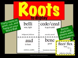 127-roots-to-display-SET-1-ADJ.pdf