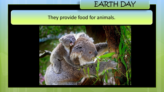 preview-images-earth-day-powerpoint-15.pdf