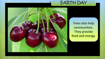 preview-images-earth-day-powerpoint-14.pdf