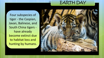 preview-images-earth-day-powerpoint-19.pdf