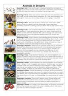 3---Animals-in-dreams.docx