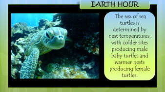 earth-hour-preview-slide-m.pdf