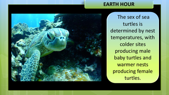 preview-images-earth-hour-14.pdf