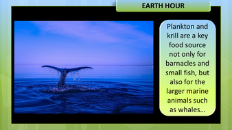preview-images-earth-hour-11.pdf
