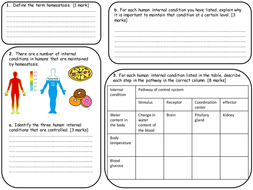 Photosynthesis, Respiration and Homeostasis worksheets NEW GCSE ...