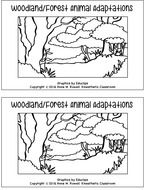 WoodlandAdaptationsScienceReaderTES.pdf