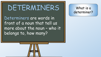 determiners-preview-slide-1.pdf