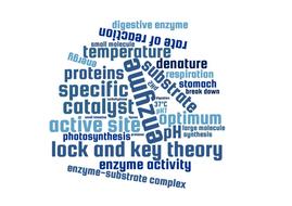 Enzyme-word-cloud.pdf