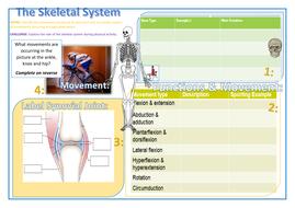 (1)-Learning-Mat--Skeletal.docx