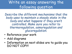 English Essay Papers  Lcomputerroomessayonhomeostasispptx  Good Persuasive Essay Topics For High School also Example Of Essay Proposal Aqa  Level  Certificate Applied Science Unit  D Homeostasis  Persuasive Essay Thesis Statement