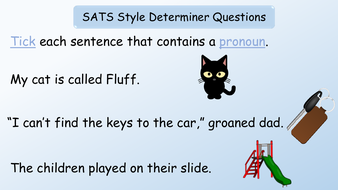 preview-images-revision-english-sats-grammatical-terms-pronouns-36.pdf