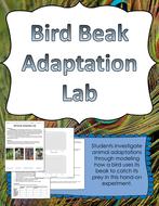 BirdBeakAdaptationLab.pdf