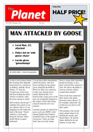 Newspaper-Article---Man-Attacked-by-Goose.doc