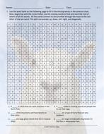 Animals-Word-Maze.pdf